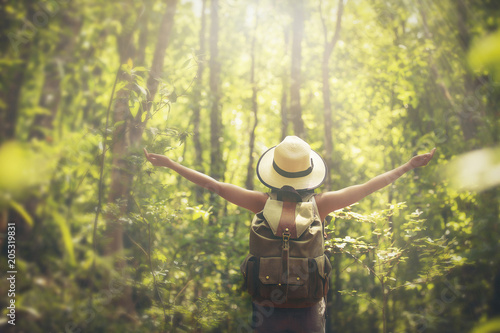 Poster de jardin Jaune de seuffre woman traveler with backpack holding hat and walking in the maple forest.