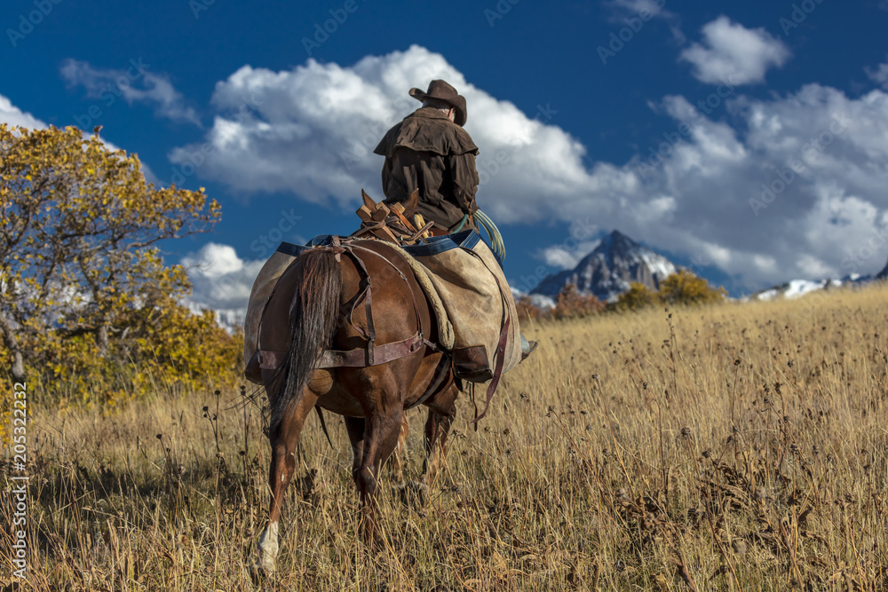 Fototapety, obrazy: Older Cowboy leads packhorse across historic Last Dollar Ranch on Hastings Mesa, SW Colorado, San Juan Mountains