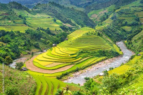 In de dag Rijstvelden Beautiful rice field terraced at Mu Cang Chai, Yen Bai, during trip HANOI to SAPA Northwest Vietnam