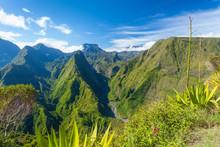 Ile De La Réunion - Dos D'âne