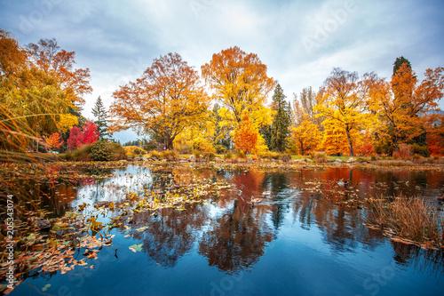 Poster Océanie Queenstown Garden autumn scenes