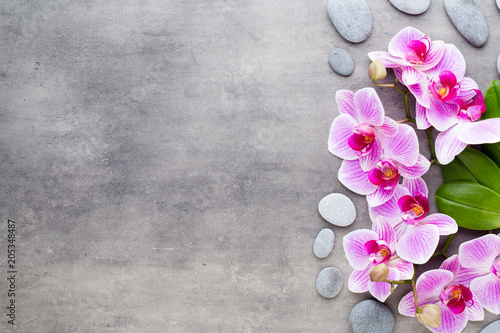 Fotobehang Edelsteen Beauty orchid on a gray background. Spa scene.