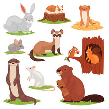 Forest Animals Vector Cartoon ...