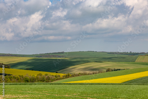 Sussex Spring Landscape