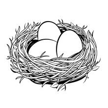 Nest With Golden Egg Coloring ...