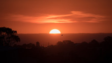 Zoomed In Sunset