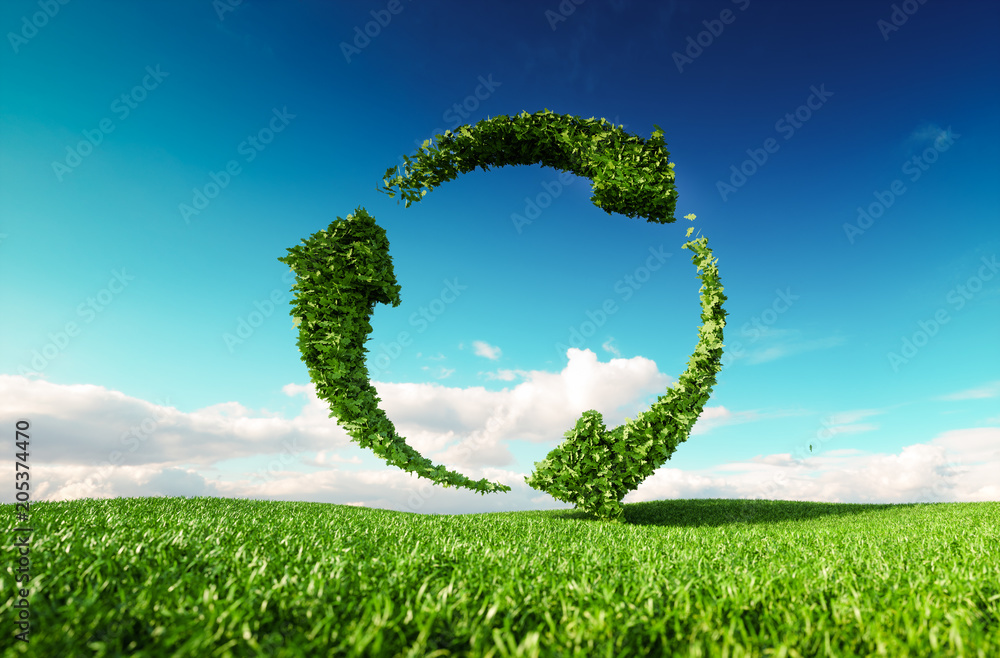 Fototapeta Sustainable development, eco friendly lifestyle concept. 3d rendering of arrow circle icon on fresh spring meadow with blue sky in background.