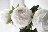 peonia bianca e rosa pallido