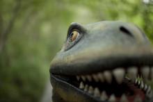 A Dinosaur Face Close Up Smiling