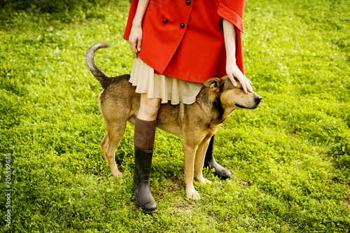 Girl in a red cape petting a brown dog in a field of green grass