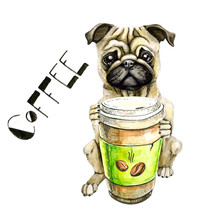 Pug Breed Dog With A Glass Of ...