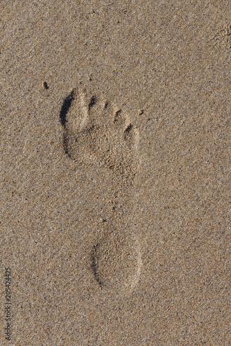 Fotografija  Empreinte de pied sur le sable