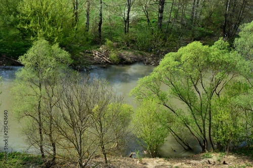 Deurstickers Groene landscape of the river