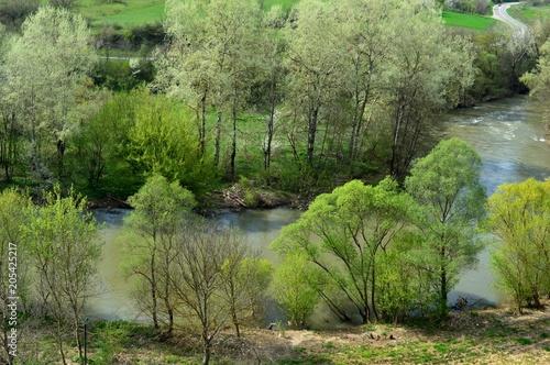 Foto op Canvas Pistache landscape in the river