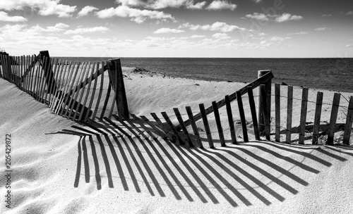 Fotografiet  Pathwayway through to the beach in black and white