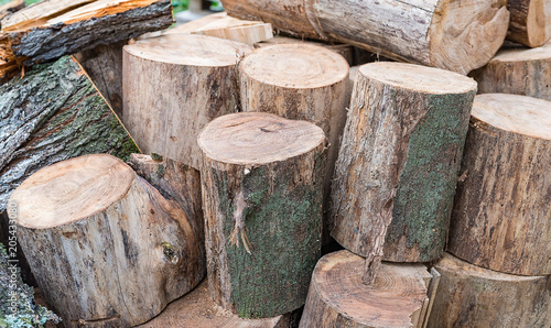 Foto op Aluminium Brandhout textuur The texture is a variety of wooden logs