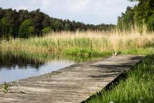 A Winding Wooden Bridge In The...