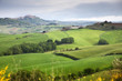 green summer landscape in tuscany, Italy