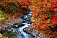 秋の中津川渓谷(猪苗...