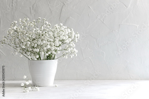 Small White Flowers On A White Background Soft Home Decor