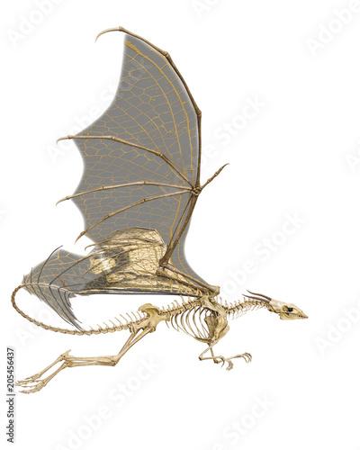 Fototapeta premium dragon skeleton in a white background