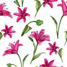 Vector Realistic Pink Lily Blossom Leaves Stem Set