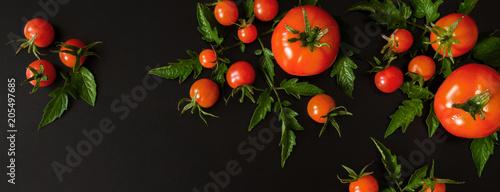 Fototapeta Fresh vegetables tomato and fragrant greens salad, parsley, basil on a dark background, concept of vegetarianism and healthy eating. Flat black background long baneer obraz