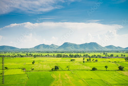 Fotobehang Rijstvelden Beautiful landcape rice green field, mountain with blue sky in sunny day from viewpoint, central Thailand