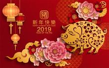 Happy Chinese New Year 2019 Zo...