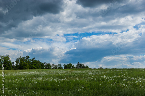 View of czech countryside in sunny day. Poster