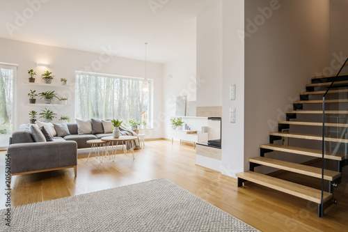 Obraz Grey apartment interior with plants - fototapety do salonu