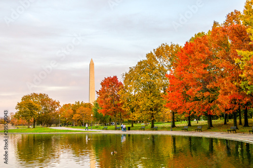 Fotografie, Obraz  Washington Monument in the Fall
