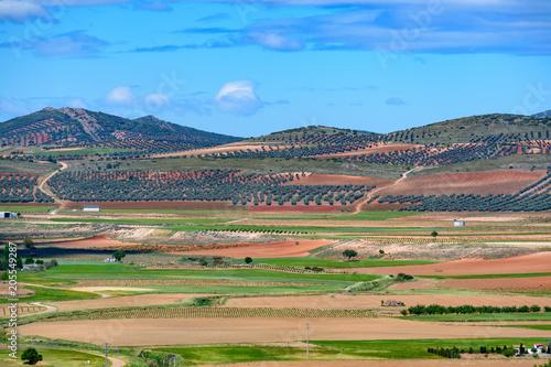 Foto op Canvas Blauw Spain. Castilla de la Mancha.Consuegra. Fields seen from the Calderico hill.
