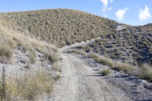 Camino entre cárcavas en Morata de Tajuña Canvas Print