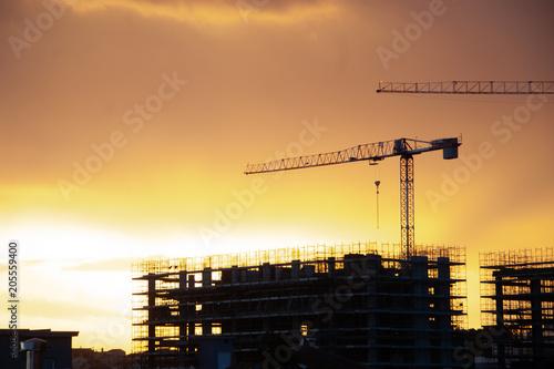 Photo  il lavoro al tramonmto