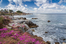 Spring Weather At Pacific Grove, Monterey Bay