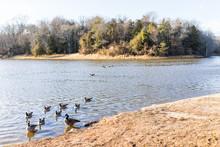 Lake Fairfax Park In Winter In...