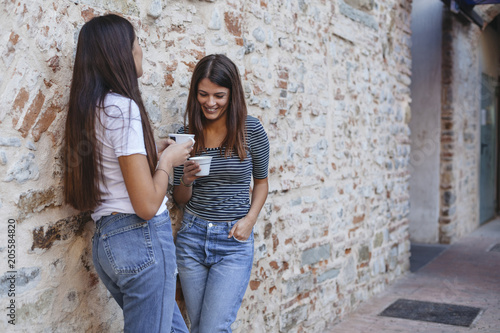 Female friends holding cappuccino talking while standing by old brick wall