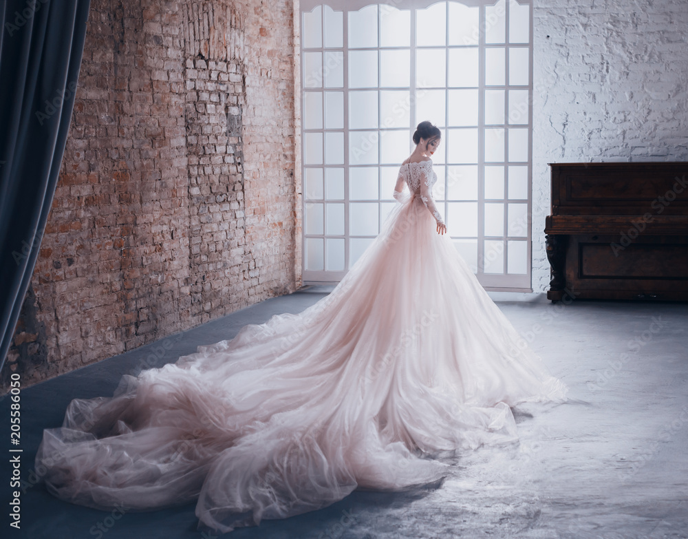 Fototapety, obrazy: A young princess in an expensive, luxurious dress with a long train stands with her back to the camera, against the background of a vintage, high window. Stylish Fashion