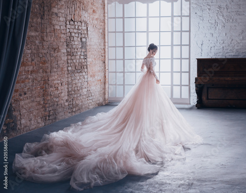 Obraz na plátně  A young princess in an expensive, luxurious dress with a long train stands with her back to the camera, against the background of a vintage, high window