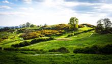 Hadleigh Park