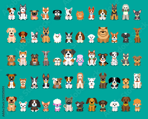 plakat Different type of vector cartoon dogs