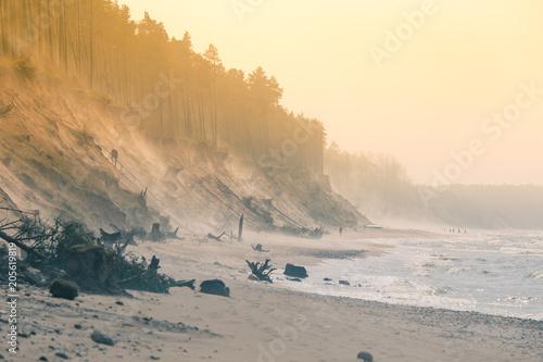 piekny-poranek-krajobraz-plazy-nad-morzem-baltyckim-artystyczna-kolorowa-sceneria-brzegu-morza-na-wiosne-wietrzny-dzien