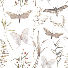 Watercolor Butterfly And Summer Field Herbs Seamless Pattern. Hand Painted Texture With Botanical Elements: Plants, Grass, Berries, Fern, Leaves. Natural Repeating Background