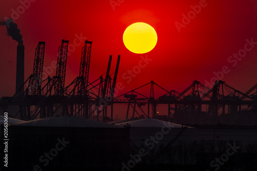 Staande foto Rotterdam The Rotterdam harbour during sunset - Netherlands
