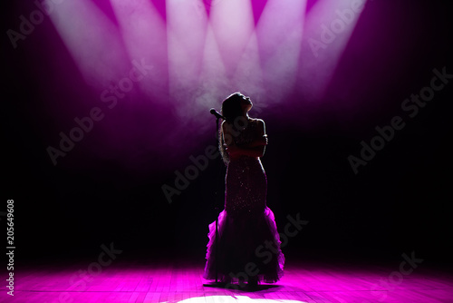 Silhouette of singer on stage. Dark background, smoke, spotlights