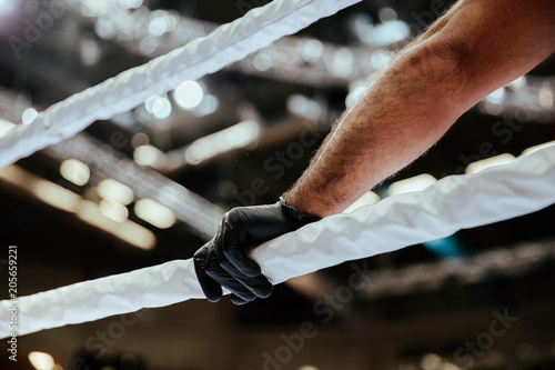referee hand in black glove on white ropes of ring фототапет