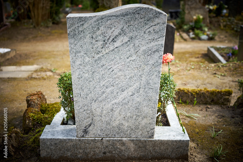 Grief at cemetery / Red carnation on gravestone / Tombstone Wallpaper Mural