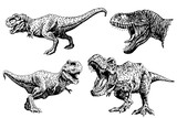 Graphical set of dinosaurs  isolated on white background , vector illustration
