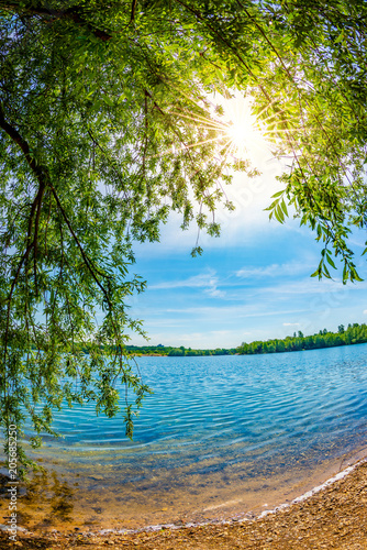 Poster Bleu Lake with trees and bright sun on a hot summer day